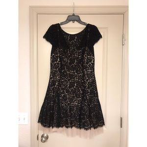 Eliza J Lace Fully Lined Fit & Flare Dress